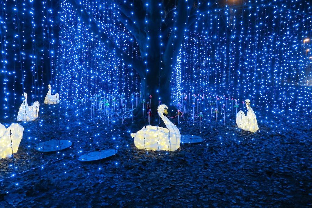 크리스마스+인스타그램, 밴쿠버 시내 여기서 찰칵 IMG 4122