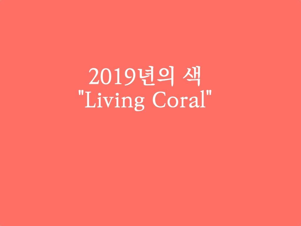 2019년의 색은, 살아있는 산호색 2019color