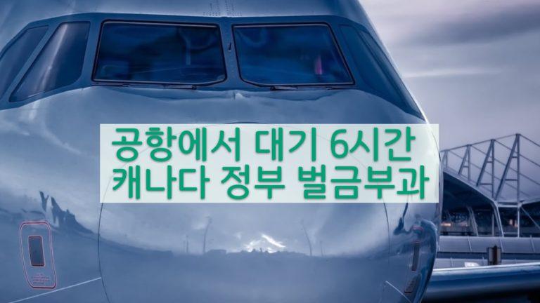 승객 민원으로 항공사 선윙 근 C$70만 벌금