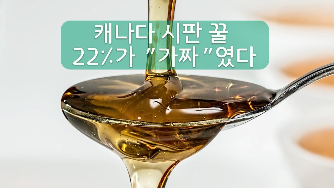 가짜 꿀 단속 결과