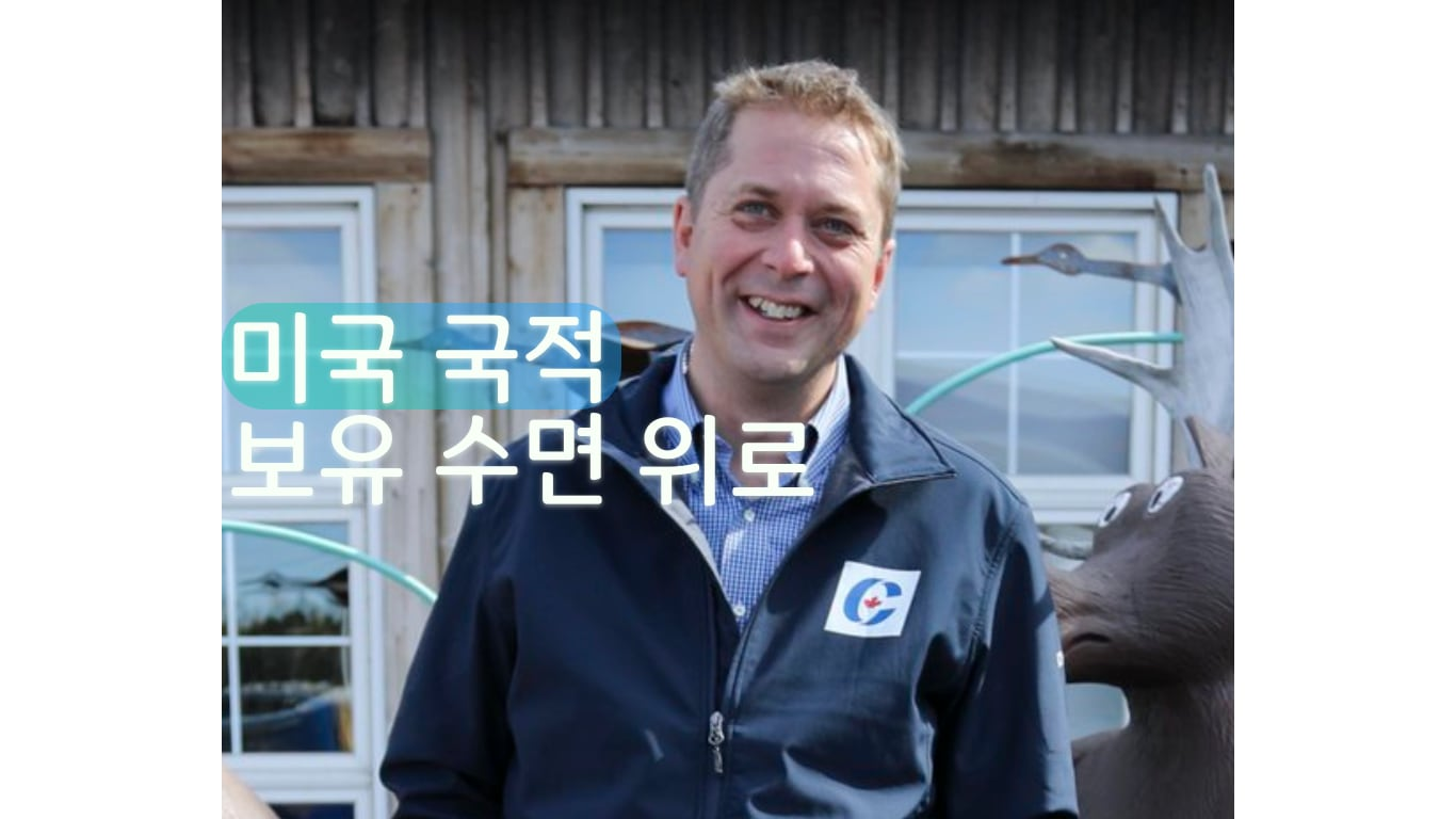 앤드루 쉬어 보수당 대표