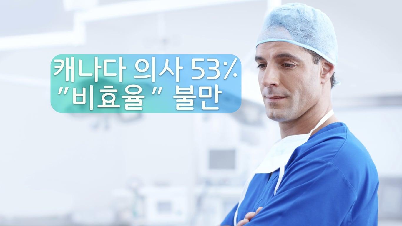 캐나다 의사 피로