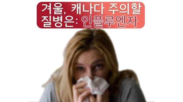 캐나다 겨울에 흔한 병 (1)인플루엔자