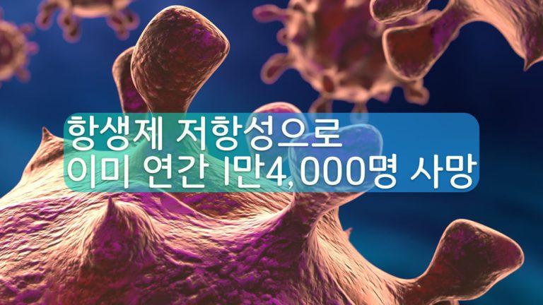 항생제 저항 박테리아 '재난' 된다