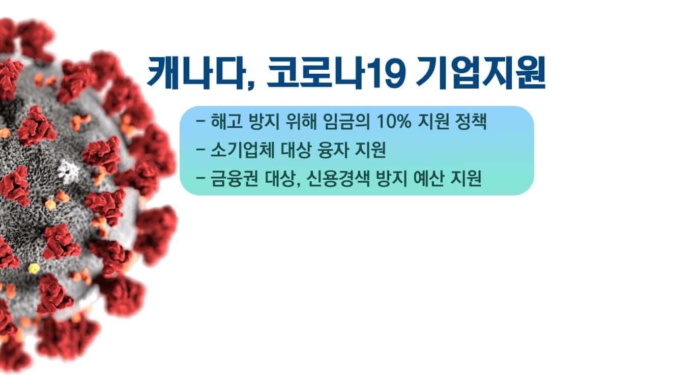 코로나19 기업대상 3대 대책 발표 18 money2
