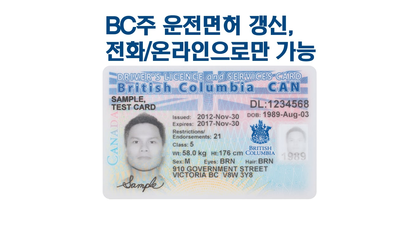 BC 운전면허증