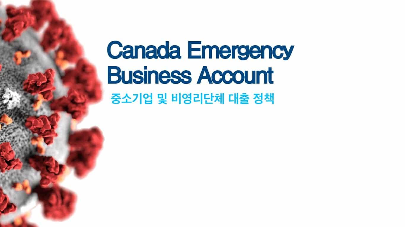 캐나다 비상 사업 계좌