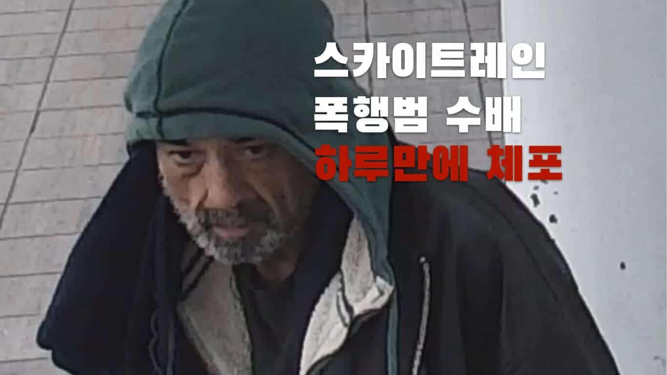 스카이트레인 승객 폭행 사건 용의자 체포 30 skytrain