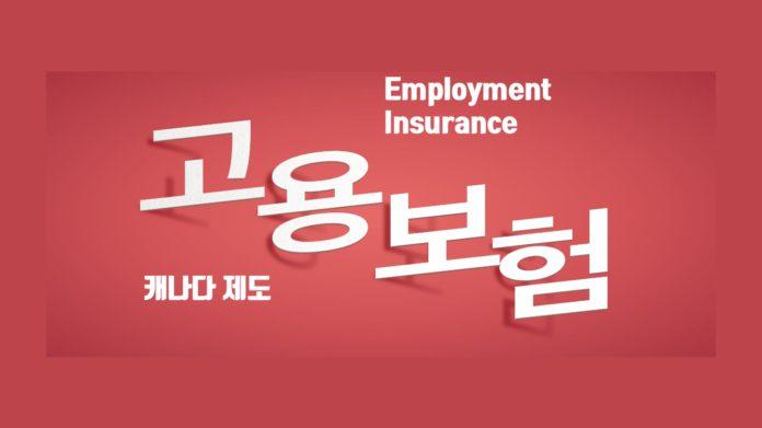 캐나다 고용보험