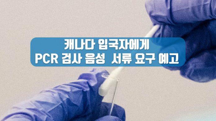 캐나다 코로나바이러스 검사