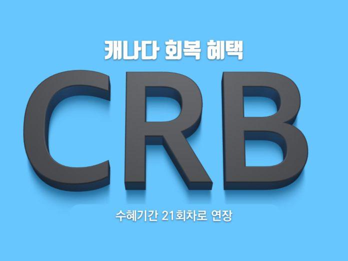 CRB 신청