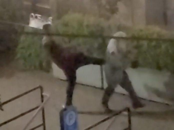예일타운 노숙자 폭행 사건